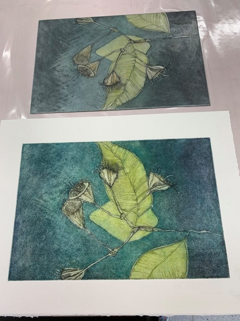 Coralie Gunn's beautiful etching and plate from Hannah Parker previous course