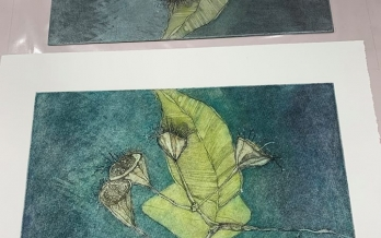 Intaglio from Inkmasters Print Workshop etching course by Coralie Gunn
